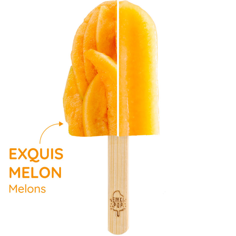 Exquis Melon | Sorbet Artisanal